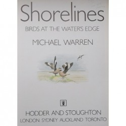 Shorelines. Birds At The...