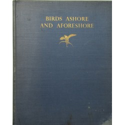 Birds Ashore and Aforeshore